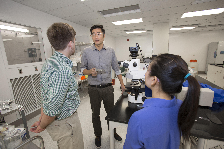 PhD Engineering - Mechanics and Materials Emphasis