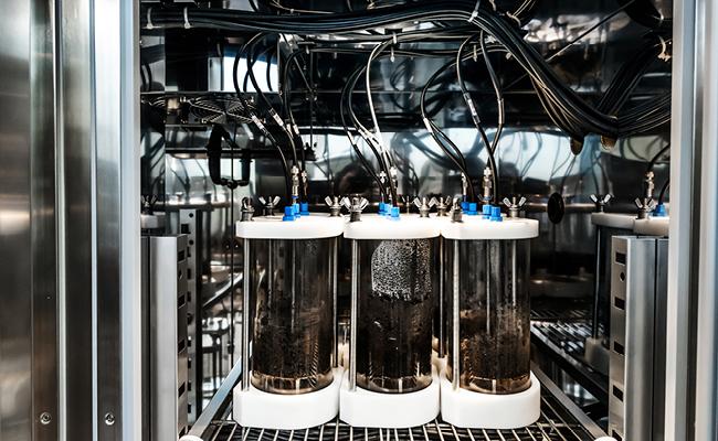 2021 Capstone Showcase: Medical Device or Biological Process Design